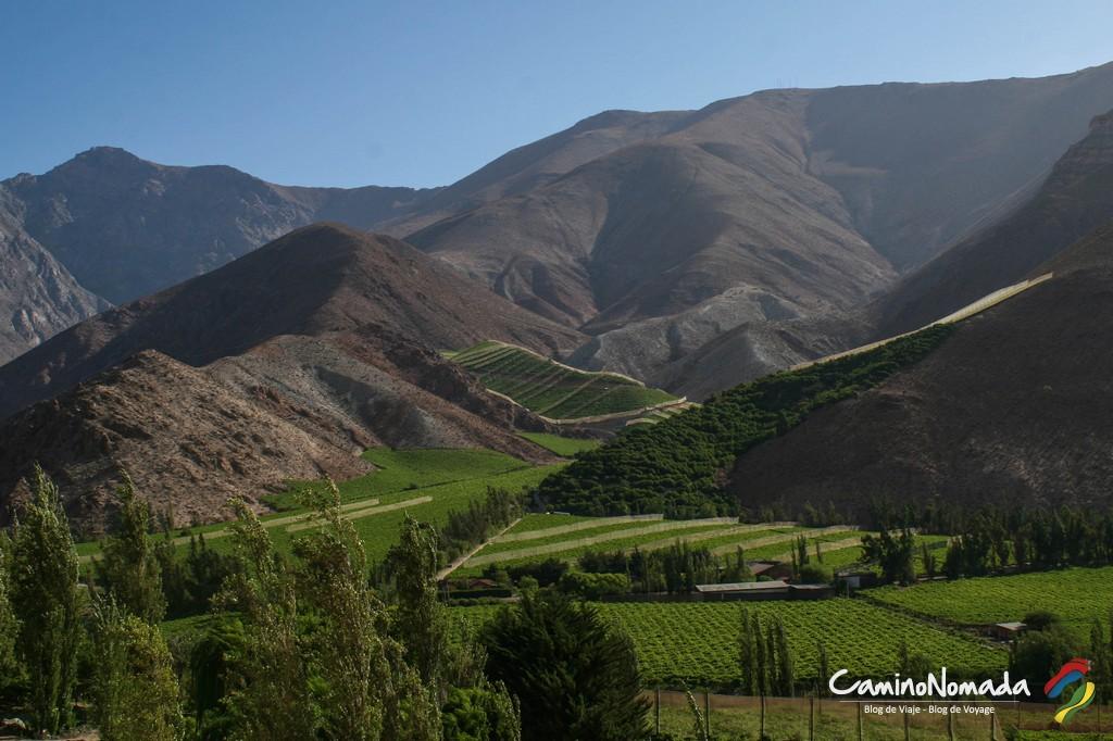 Chile-2849