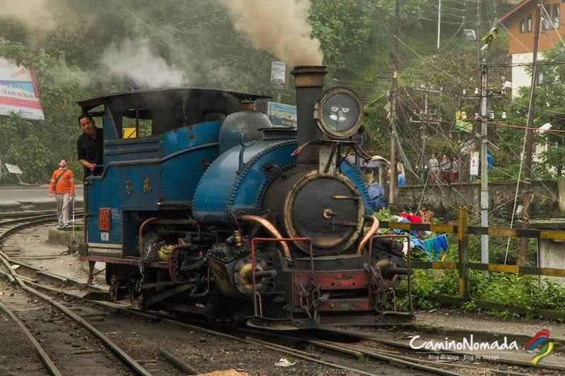 tren-6954