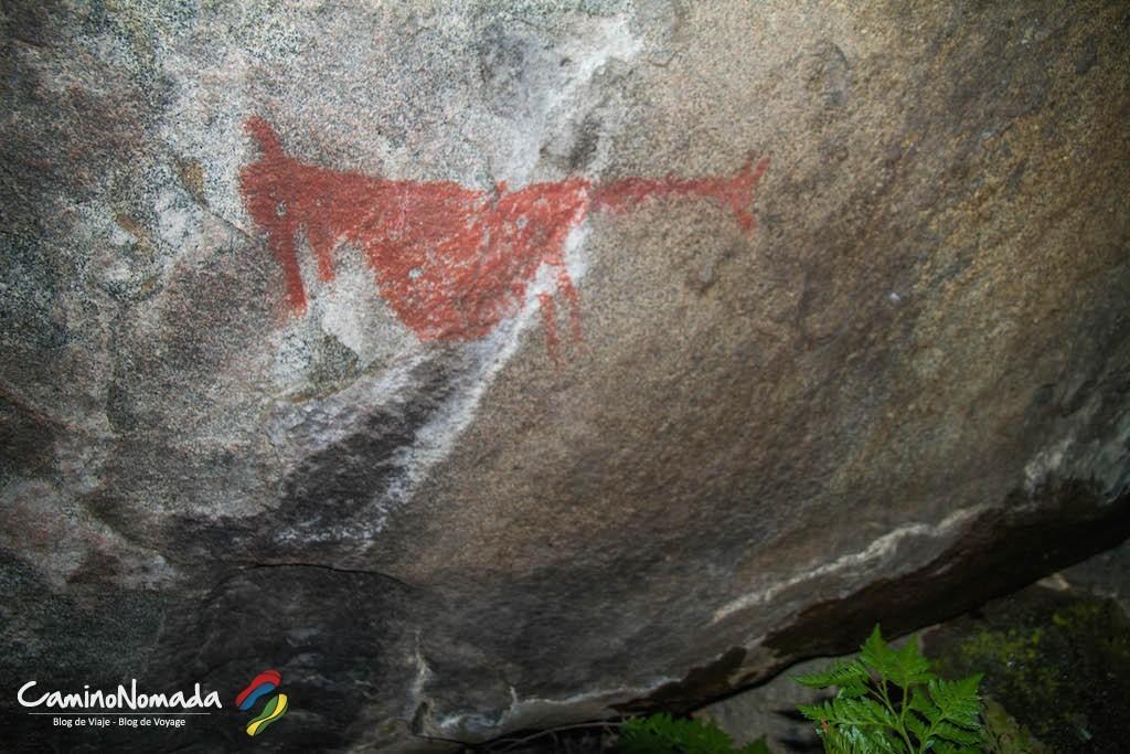 carretera-austral-petroglifo