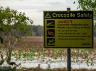 Kakadu National Park, un incontournable du Northern Territory